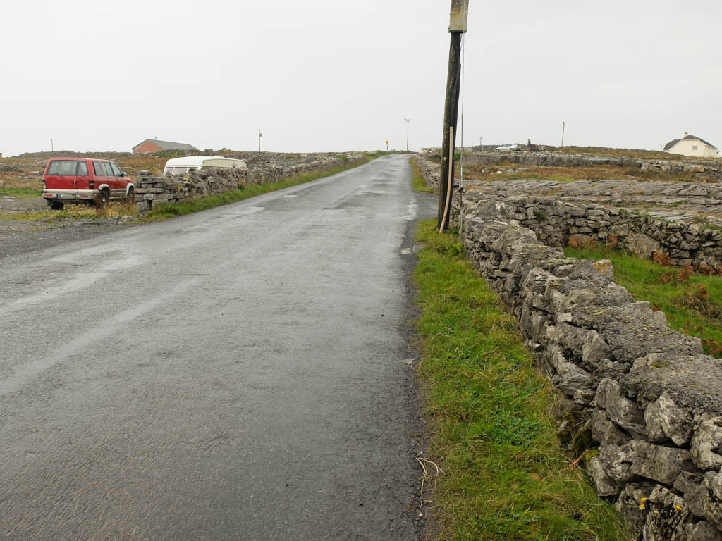 Olivia Leaves | Aran Islands