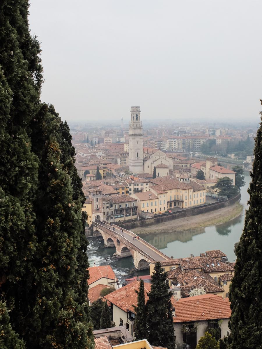 Olivia Leaves | 24 Hours in Verona