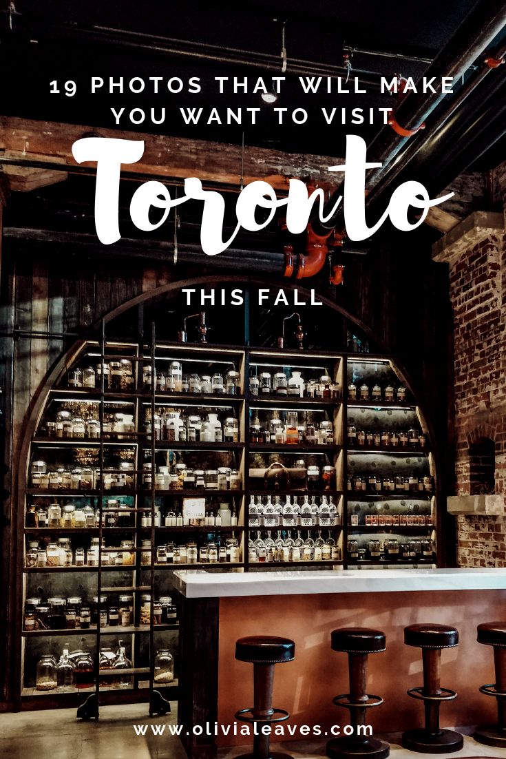 Olivia Leaves | 19 Photos That Will Make You Want to Visit Toronto This Fall